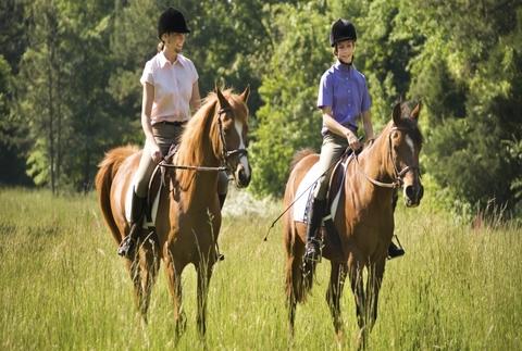 Paseo a caballo y clase de equitación