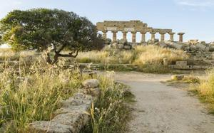 Acrópolis de Selinunte