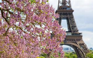 Tour Eiffel en primavera
