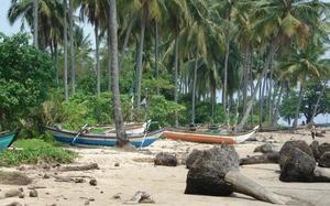 Playa palemra