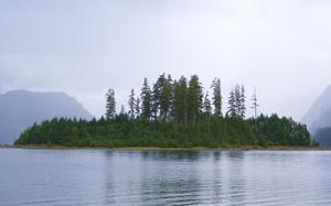 Parque provincial de Strathcona, en la Isla de Vancouver