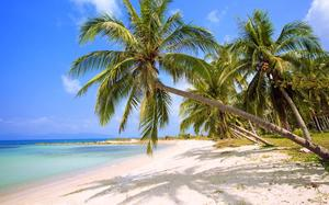 Playa de Koh Samui