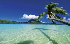 Bora Bora tropical