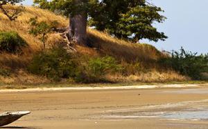Costa de Gambia