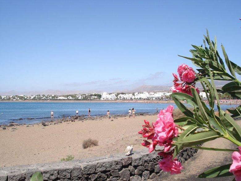 Los 2 mejores hoteles con internet en las habitaciones en for Hoteles con habitaciones comunicadas playa