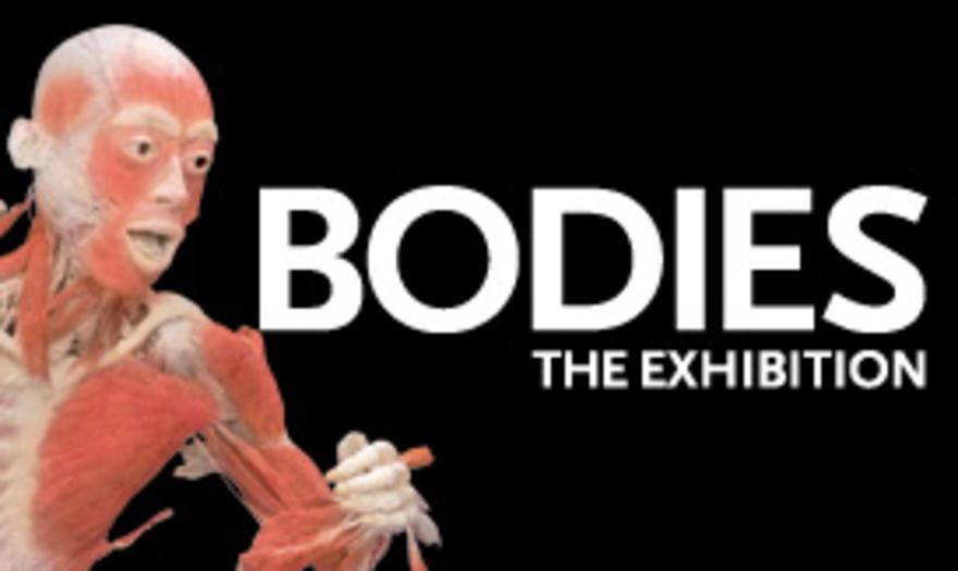 Bodies... The Exhibition (Madrid)