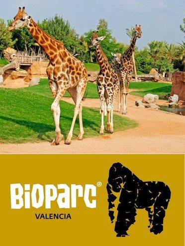 El parque de cabecera bioparc valencia venta de - Bioparc precios valencia ...