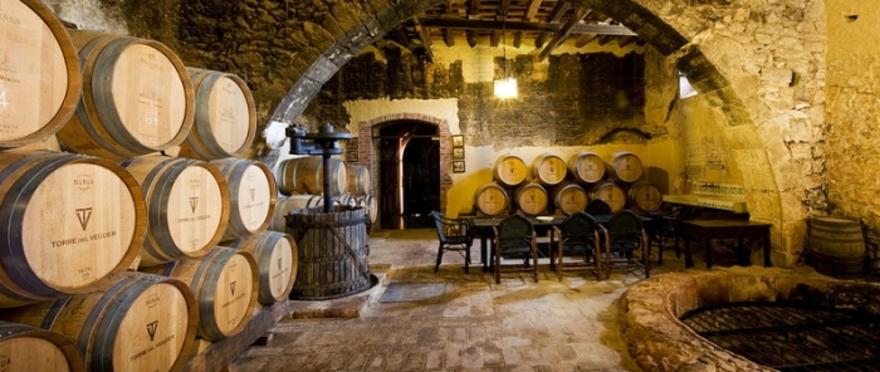 Visita a la bodega con maridaje de vino y quesos