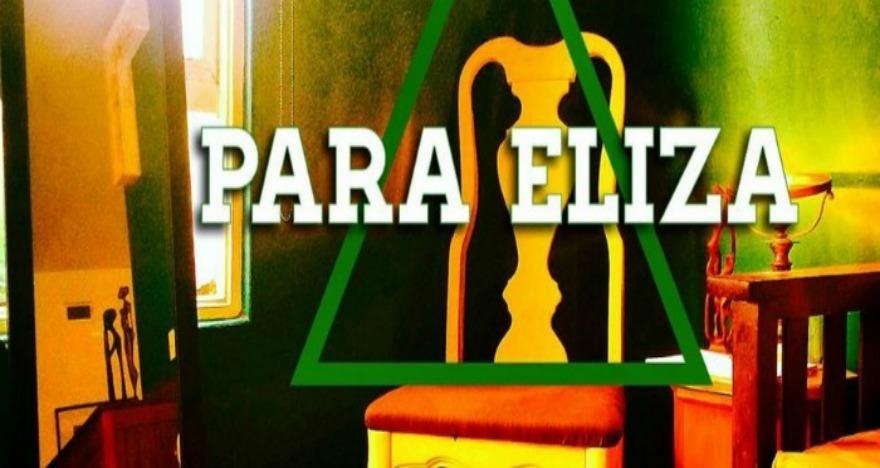 para_eliza_img1