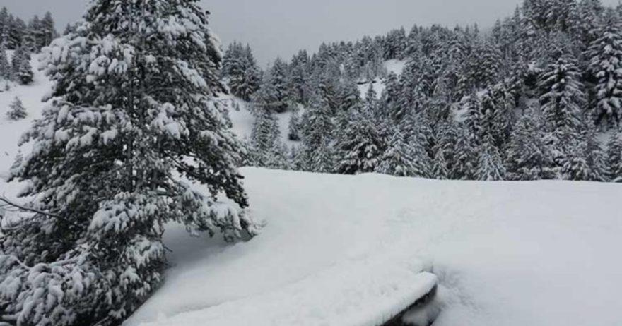 #AtrápaloAsap: raquetas de nieve y spa