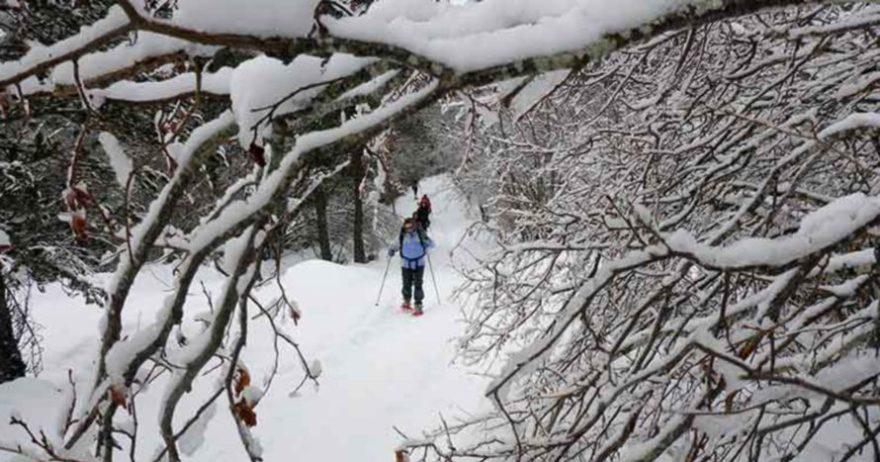 Raquetas de nieve y spa en la Sierra de Guadarrama