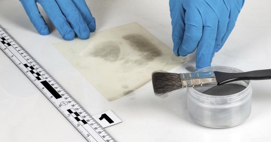 Fotos de medicina forense y criminalistica