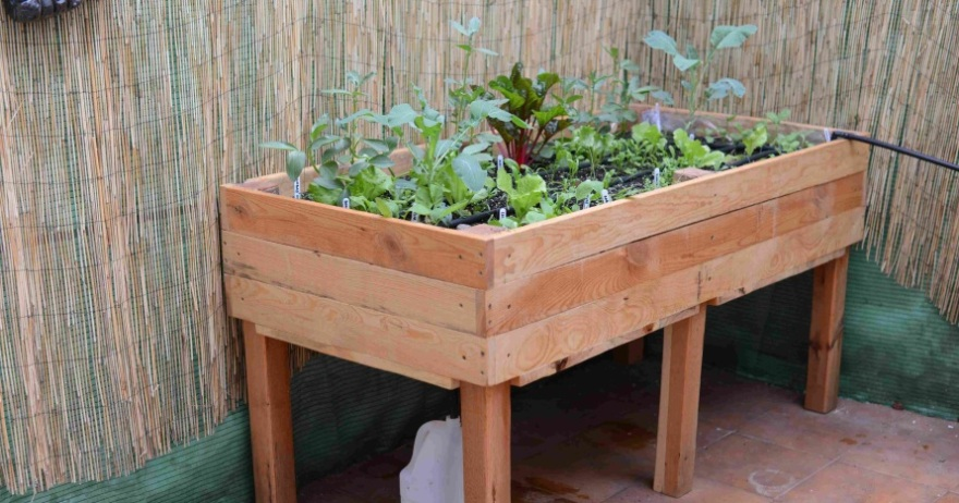 Bricolaje para huertas terrazas y jardines lozoya for Bricolaje para jardin