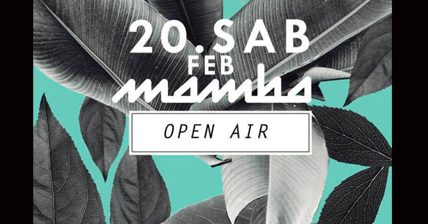 Open Air Mamba