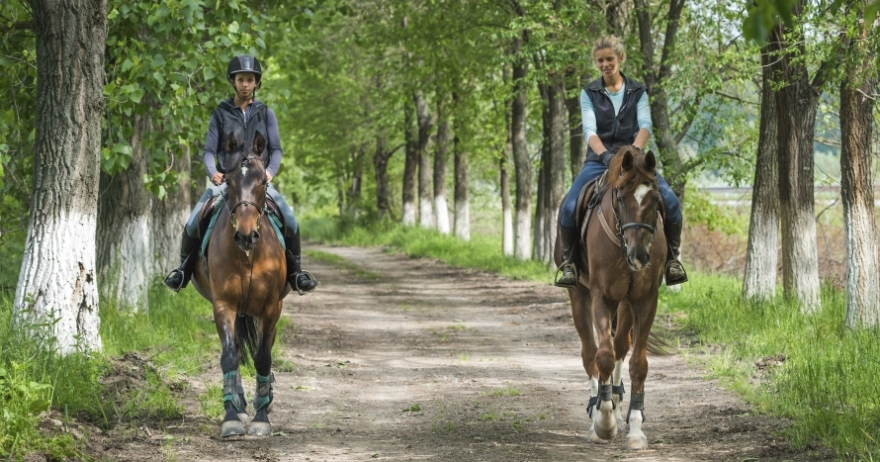 Ruta a caballo por Salamanca