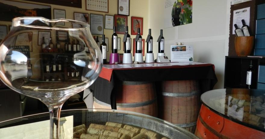 Visita Bodega Baronia del Montsant en 4x4