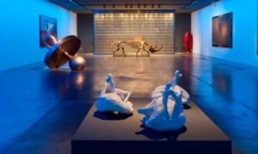 Visita guíada al Museo Sa Bassa Blanca