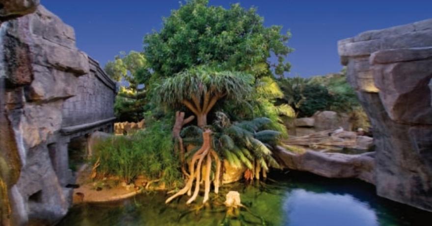 Bioparc Fuengirola: naturaleza en abierto