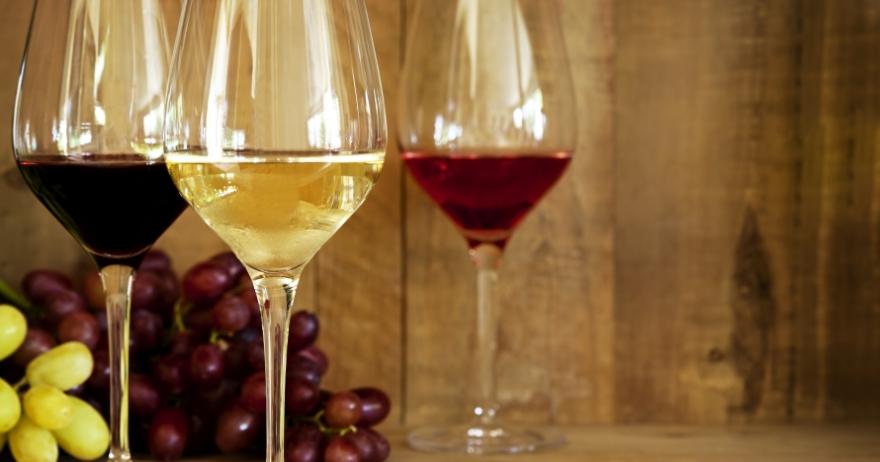 Cata de los vinos de D.O. de Montilla-Moriles