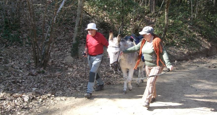 Senderismo acompañados de un burro