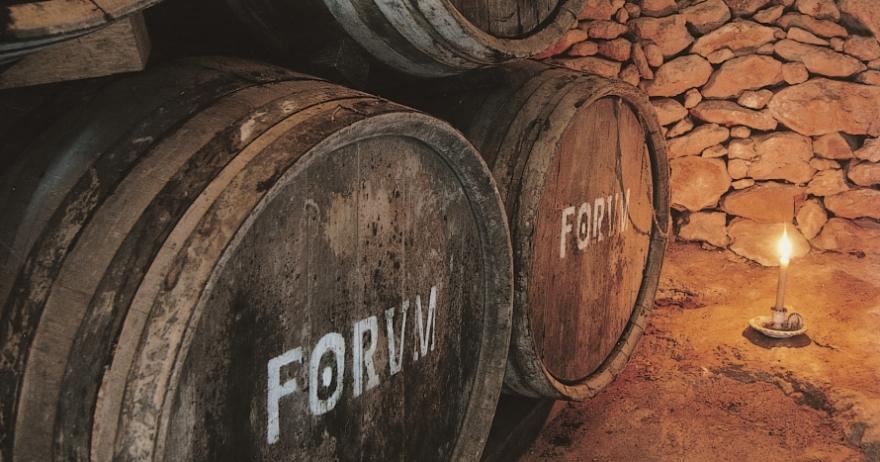 Visita a la Bodega Avgvstvs Forum con degustación