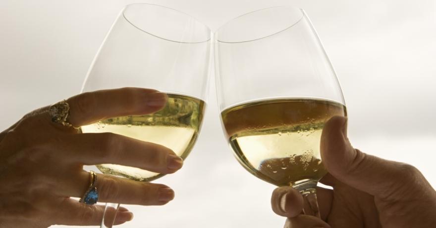 El universo del vino en tu propia casa
