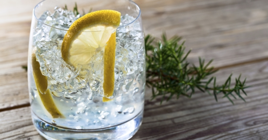 Los secretos del gin-tonic