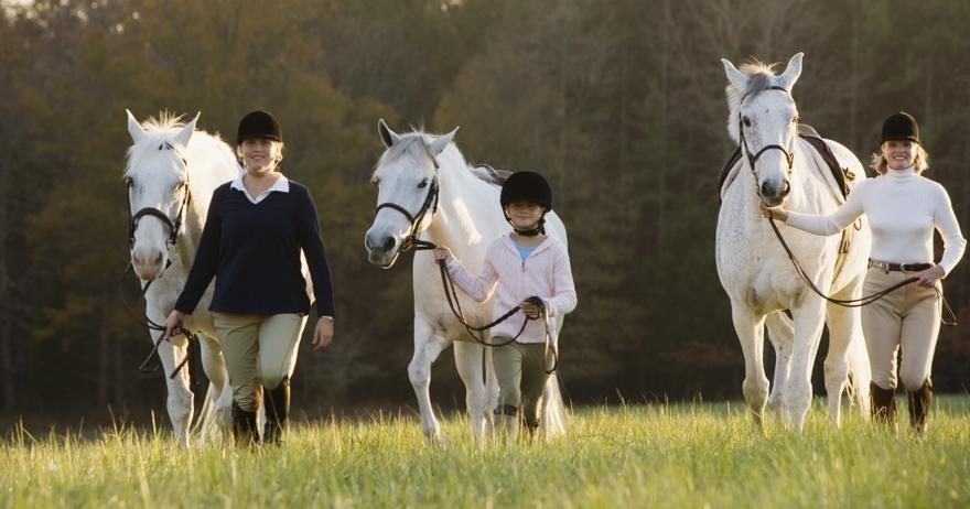 Paseo a caballo + clase de equitaci�n