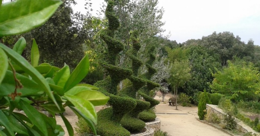 El bosque encantado 13 dto san mart n de valdeiglesias - Jardin encantado madrid ...