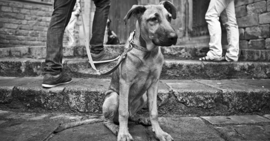 Sesión de fotos descubriendo el Gótico