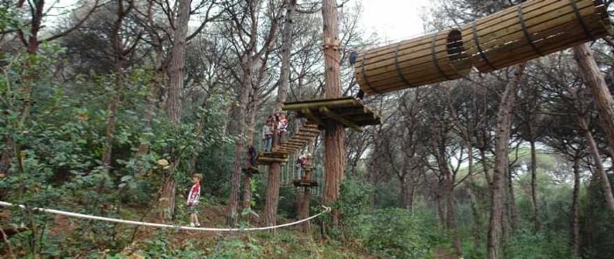 Parc d'aventura als arbres