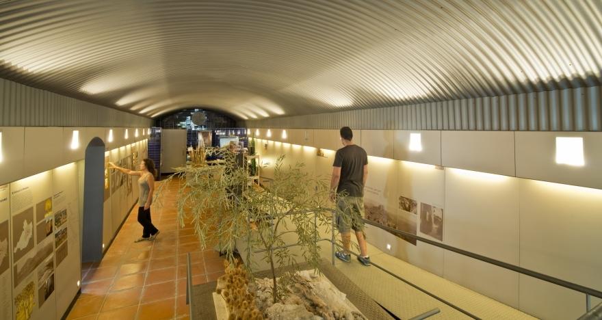 Visita el Centro Hist�rico de Cardona
