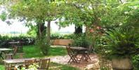 Escapada romántica entre viñedos en Hotel Rural Castell de Gimenelles