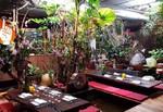 Restaurante Indochine by Ly Leap - Muntaner