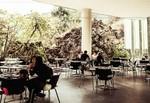 Restaurante Nube Siete