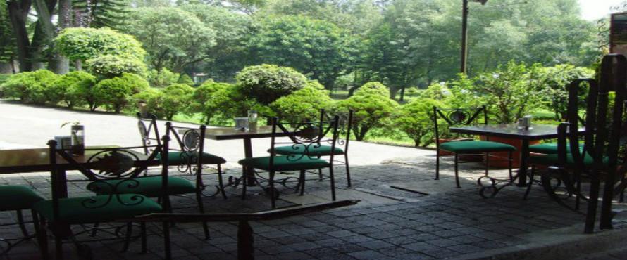 Restaurante la terraza verde ciudad de m xico atrapalo for Restaurante casa jardin