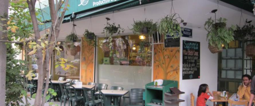 Restaurante the green corner condesa ciudad de m xico - Restaurante greener ...