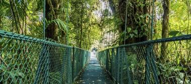 Costa Rica con Monteverde