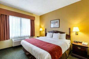 Hotel Comfort Suites Houston Bush Intercontinental