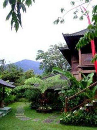 Hotel Bali Mountain Retreat