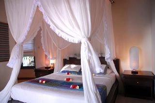 Hotel Blue Moon Villas