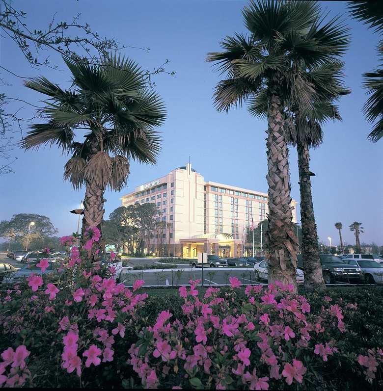 Hotel Embassy Suites Tampa Usf Near Busch Gardens Tampa Florida Fl