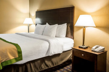 Hotel Holiday Inn Asheville-airport (i-26)