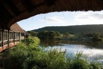 Hotel Mpongo Private Game Reserve
