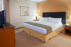 Holiday Inn Express Hotel & Suites Dfw Airport