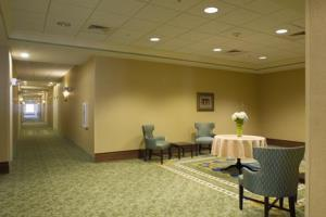Hotel Hampton Inn And Suites Savannah Midtown