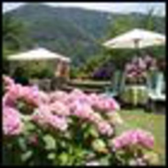 Bed & Breakfast Campomaggio