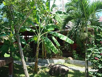 Tropical Garden Lounge Hotel & Resort
