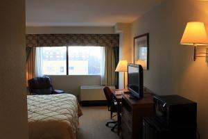 Hotel Comfort Inn & Suites Dtwn Lakeshore