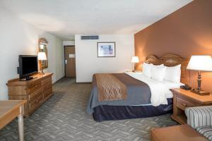 Hotel Comfort Inn And Suites Salt Lake City Downtown